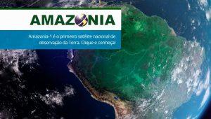 Brasilien: Abholzung des Amazonas-Regenwaldes schlimmer als befürchtet