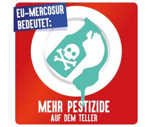 """** Neue Publikation** : """"EU-Mercosur-Reiseführer - ein giftiges Abkommen&qu"""