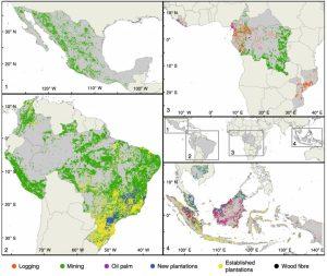 Neue Studie: Privates Investment begünstigt Waldzerstörung im Amazonas