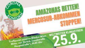 Amazonas-Mercosur Block beim weltweiten Klimastreik