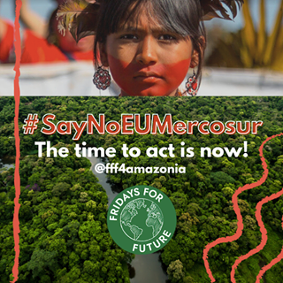 "Ist möglicherweise ein Bild von 1 Person, außen und Text ""#SayNoEUMercosur The time to act is now! @fff4amazonia FRIDAYS FOR FUTURE"""