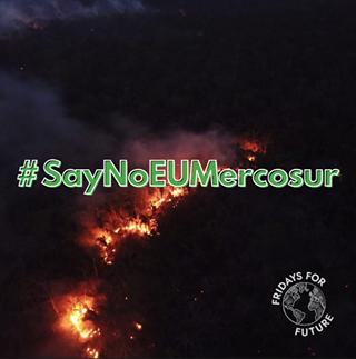 """Ist möglicherweise ein Bild von Feuer, außen und Text """"#SayNoEUMercosur FRIDAYS FOR FUTURE"""""""